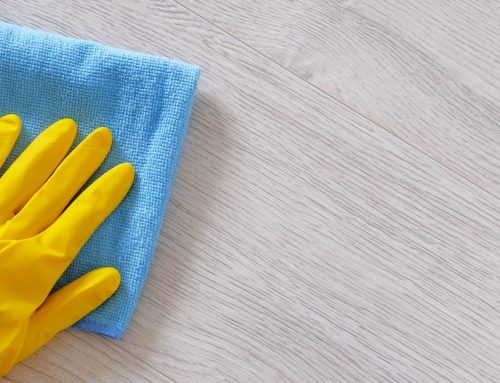Business Cleaning and Maid Services – The Importance!